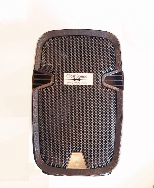 """8"""" Professional Battery Powered Bluetooth Speaker with 2 Wireless mic"""
