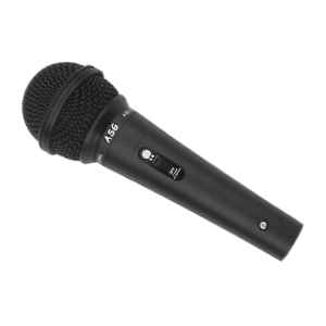 2020 Dynamic Microphone